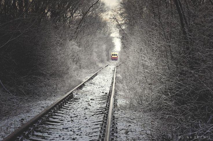 Train to Winterlandia