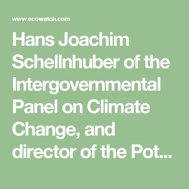 "Hans Joachim Schellnhuber of the Intergovernmental Panel on Climate Change, and director of the Potsdam Institute for Climate Impact Research, another signatory, added, ""The math is brutally clear: while the world can't be healed within the next few years, it may be fatally wounded by negligence [before] 2020."""