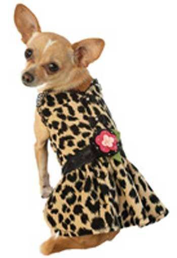 71 best Doggie clothes & patterns images on Pinterest ...