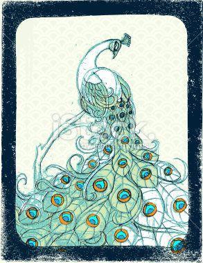 Paon, Plume, Oiseau, Dessin, Illustration et peinture Illustration vectorielle libre de droits