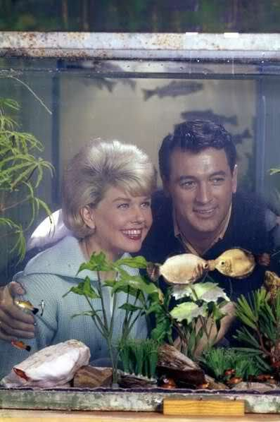 Doris Day & Rock Hudson~
