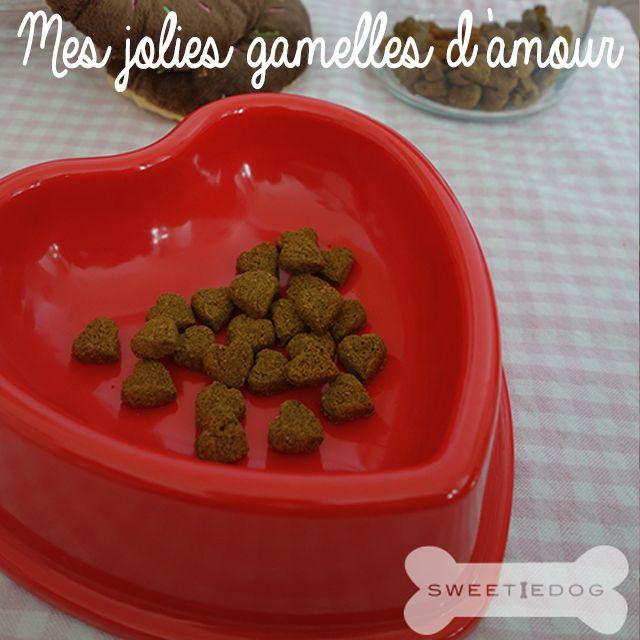 Gamelle coeur chien - www.sweetiedog.com