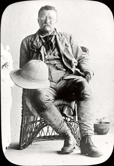 theodore roosevelt and the rise of When it comes to biographies, i think the best are the three books edmund morris  wrote: the rise of theodore roosevelt, theodore rex, and.