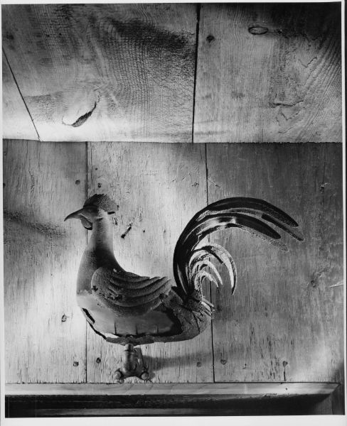 Rooster, Andre Kertesz, Winterthur: Foto Antiche, Andre Kertesz, André Kertész, Egg Mania, Fowl Mood, Light And Shadow