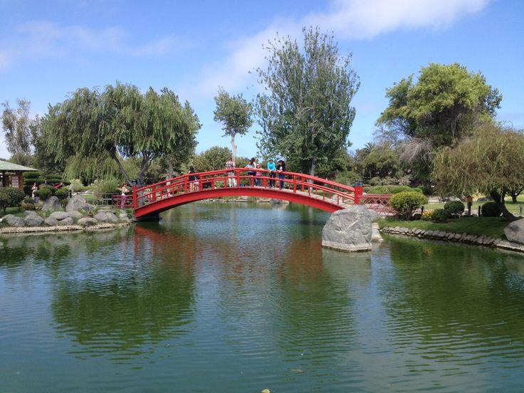 Jardín japonés, La Serena, Chile. Fotógrafo: Cristián Flores Escalona.