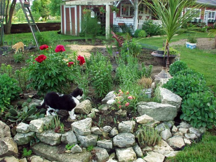 Nice Rustic Small Rock Garden Designs Home Design Ideas