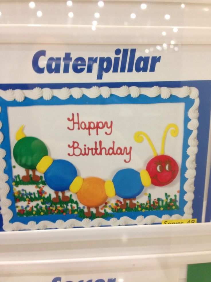 Caterpillar cake from costco 1799 for a 12 sheet ralph