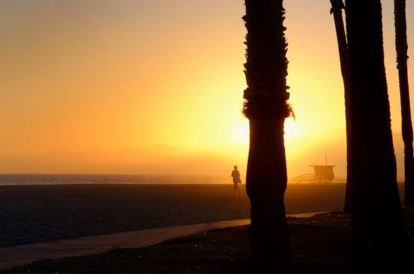 Venice Beach Gallery! Photo By Thierry Guinet #Venice #Venicebeach #Beach #Gallery #Headoutwest #Thierryguinet