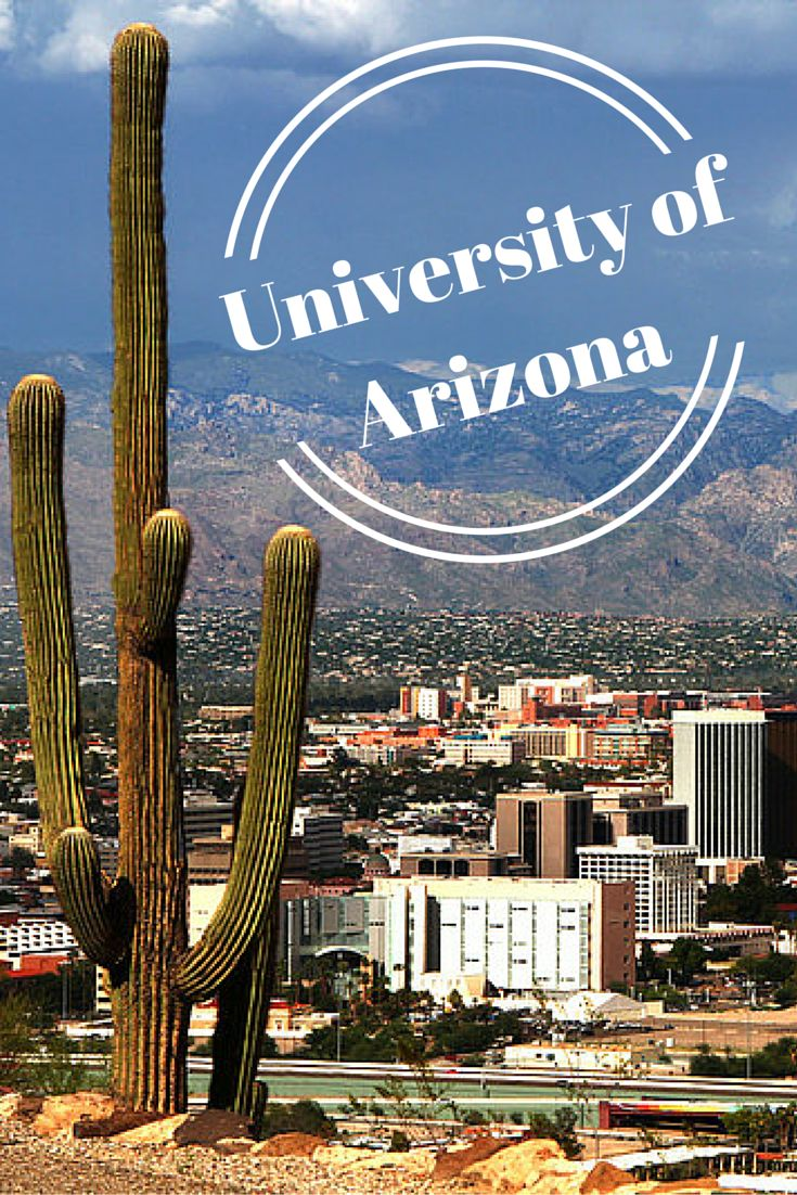 Located in sun drenched Tucson, Arizona, the palm tree lined campus of the University of Arizona attracts students from across the U.S. and the globe. After all, who wouldn't want to go to college in one of the sunniest cities in the country? Read more about the University of Arizona on our blog: https://www.studystandard.com/blog/cool-campuses-the-university-of-arizona/ #campuses #colleges