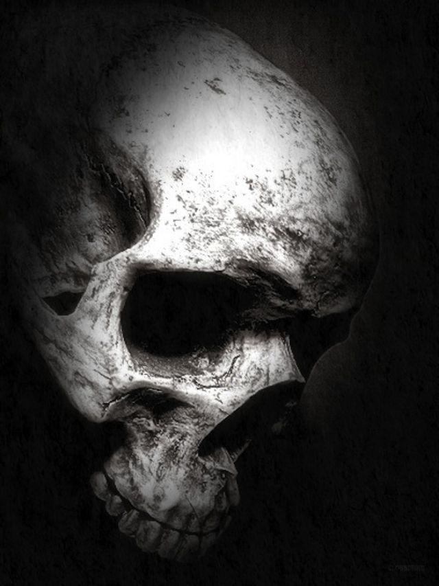 58 best Skulls images on Pinterest