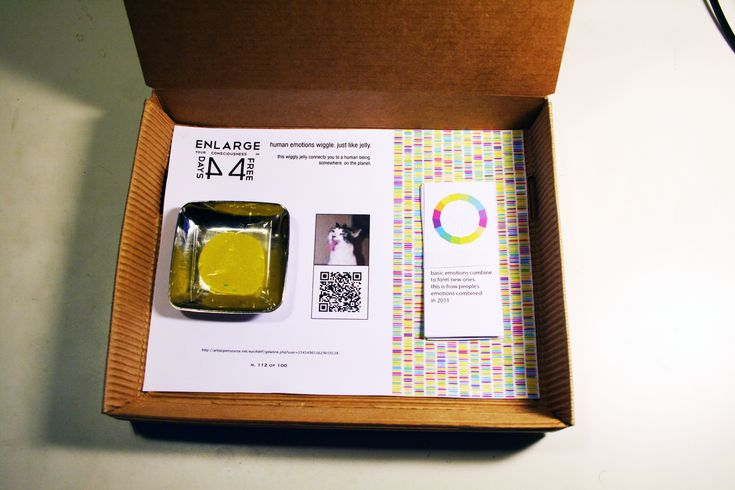 "100 users randomly caught on social networks, placed in a box and sold at a symbolic price of EUR 9.99.    Each box, numbered and unique, contains one of them: the Personal User.    Opening the box, along with a small jelly, a QRcode is discovered. Scanning the code, its owner will log in real time the emotional state of his Personal User: ""15-02 - 2012, at 16:40:39 ': love,"" and so on, until the digital identity barely bought will be alive and will vote online."