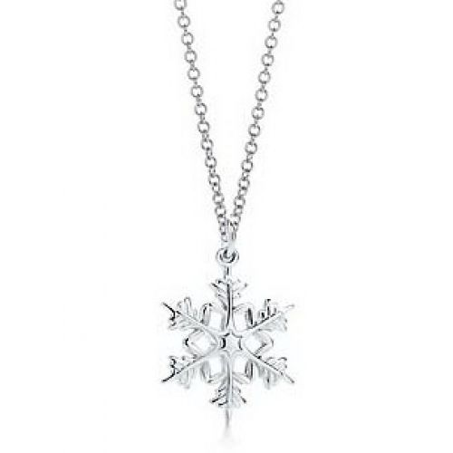 Tiffany Co Snowflake Necklace in silver... love this
