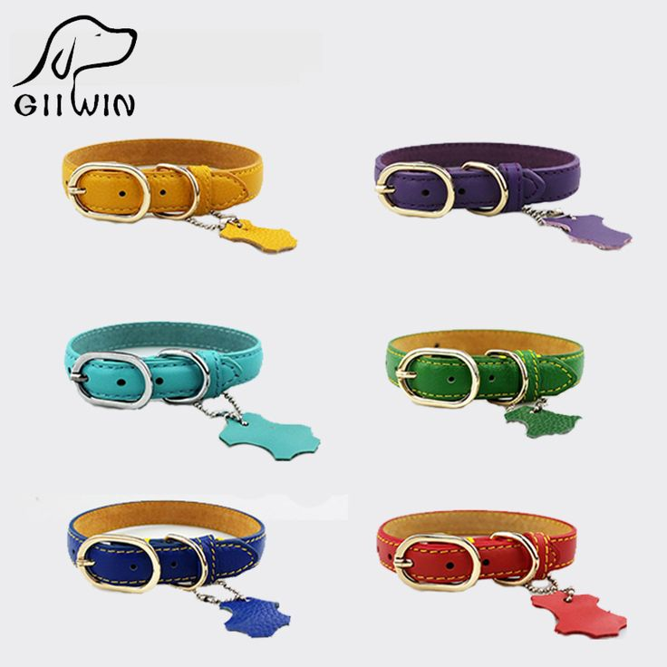 Leather Dog Collars //Price: $9.95 & FREE Shipping //     #dogsupplies