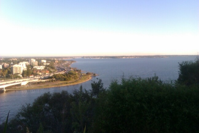 A view from Kings Park