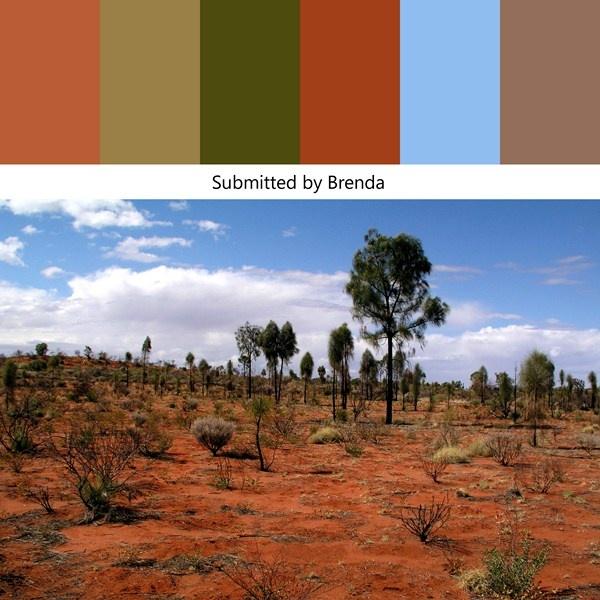 52 best color my world images on pinterest color for Southwest desert color palette
