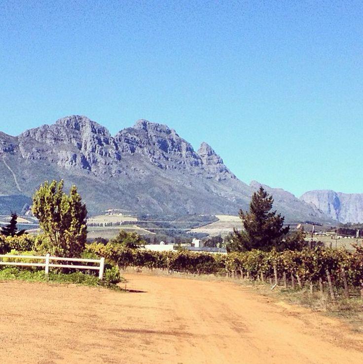 Pic I took at Stellenbosch