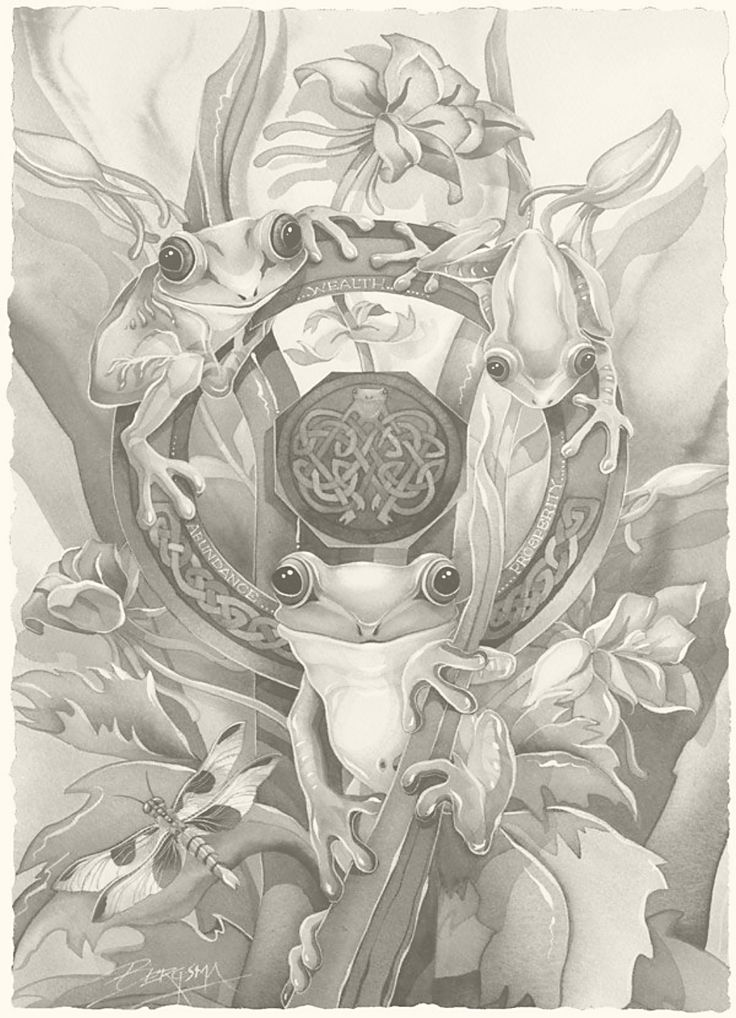 Jody Bergsma Frog animal Tier animale animales животное kočka dyr dierlijke kissa coloring page printable adults prontable Kleuren voor volwassenen Färbung für Erwachsene coloriage pour adultes colorare per adulti para colorear para adultos раскраски для взрослых omalovánky pro dospělé colorir para adultos färgsätta för vuxna farve for voksne väritys aikuiset difficult detailed anti-stress