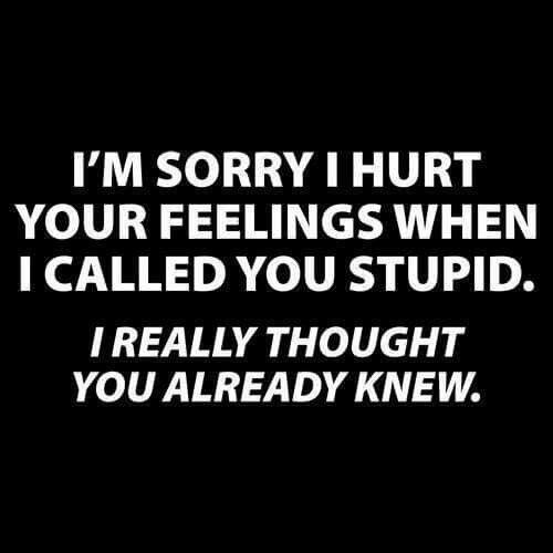 Did I hurt your feelings
