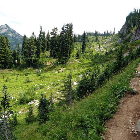 Pacific Crest Trail - California/Nevada   12 Hiking Trails That Will Take Your Breath Away