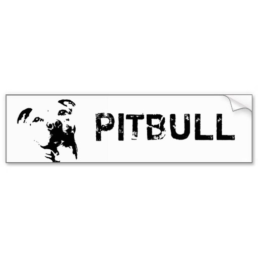 1000  images about pitbulls and bullies on pinterest