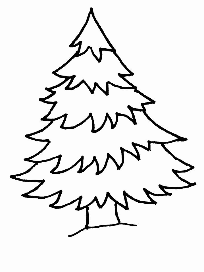 Pine Tree Coloring Page Inspirational Free Pine Tree Clipart Download Free Clip Art Fr Christmas Tree Coloring Page Tree Coloring Page Christmas Coloring Books