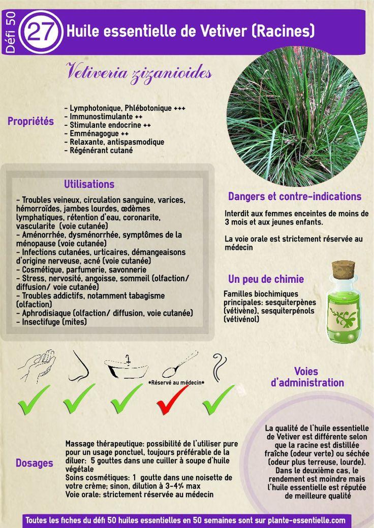 L'huile essentielle de Vetiver, sur plante-essentielle.com