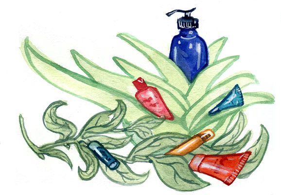Do pure, topical ingredients from nature have any science behind them? As it turns out, yes, many of them do. Here's a list of eleven heavy hitters.