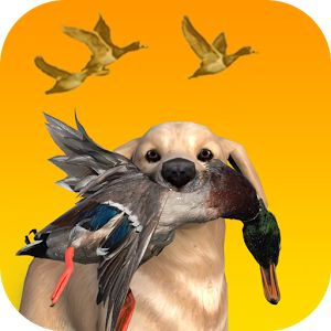 Get best hunting game for free to have fun  #ducks #hunting #games #design #mobile #huntingdog