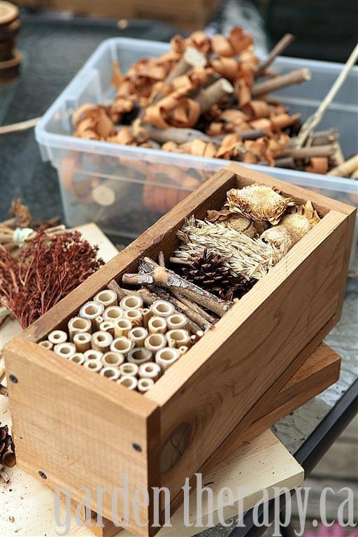Refuge hivernal pour nos insectes!!