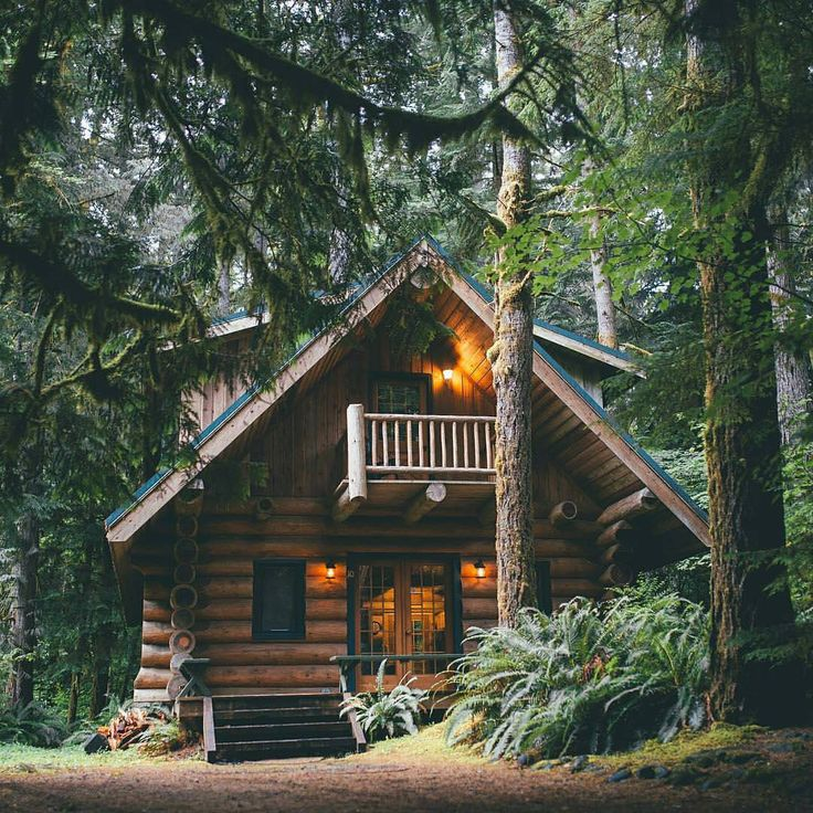 "5,305 Likes, 62 Comments - Cabin Folk (@cabinfolk) on Instagram: ""Welcome, to the cabin in the woods   Photo by @fursty   Share your cabin adventures : #cabinlife"""