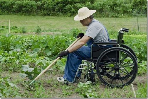 41 best gardening tools images on pinterest gardening for Gardening tools for disabled
