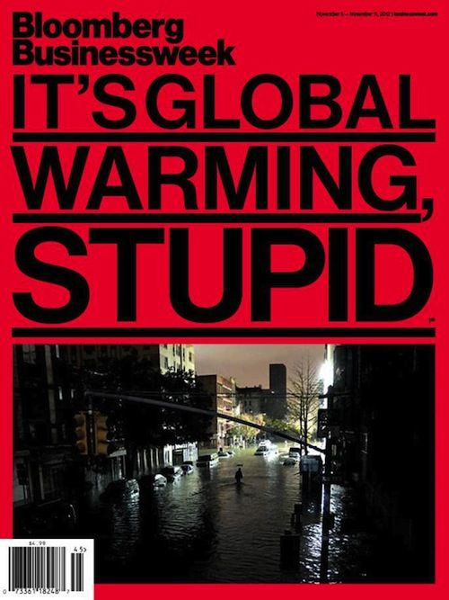 "The cover of the year goes to Bloomberg Businessweek, ""It's Global Warming, Stupid.""  Bill Clinton famously campaigned on the slogan, ""It's the economy, stupid."" Upwards of $50 billion damages from the Frankenstorm Sandy — which was made far more destructive by manmade climate change — underscores the point that it will be increasingly difficult to separate the economy from how we respond to (or fail to respond to) global warming."