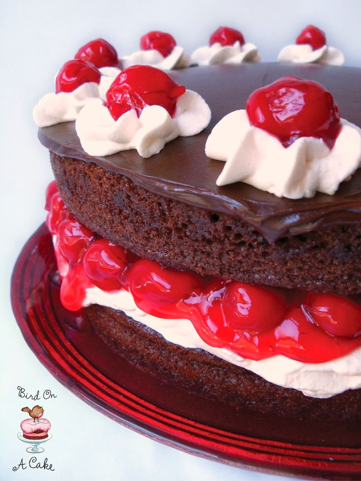 Schwarzwälder Kirschtorte !   That's what this Black Forest Cake  is called in Germany, where the recipe originated.   It is a deligh...