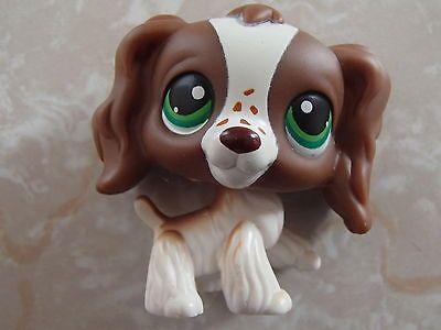 Littlest Pet Shop RARE Cocker Spaniel Dog Puppy 156 Brown White Freckles LPS   eBay