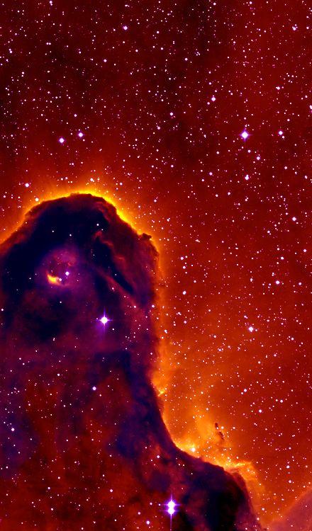 "Part Of The ""Elephant's Trunk Nebula"""