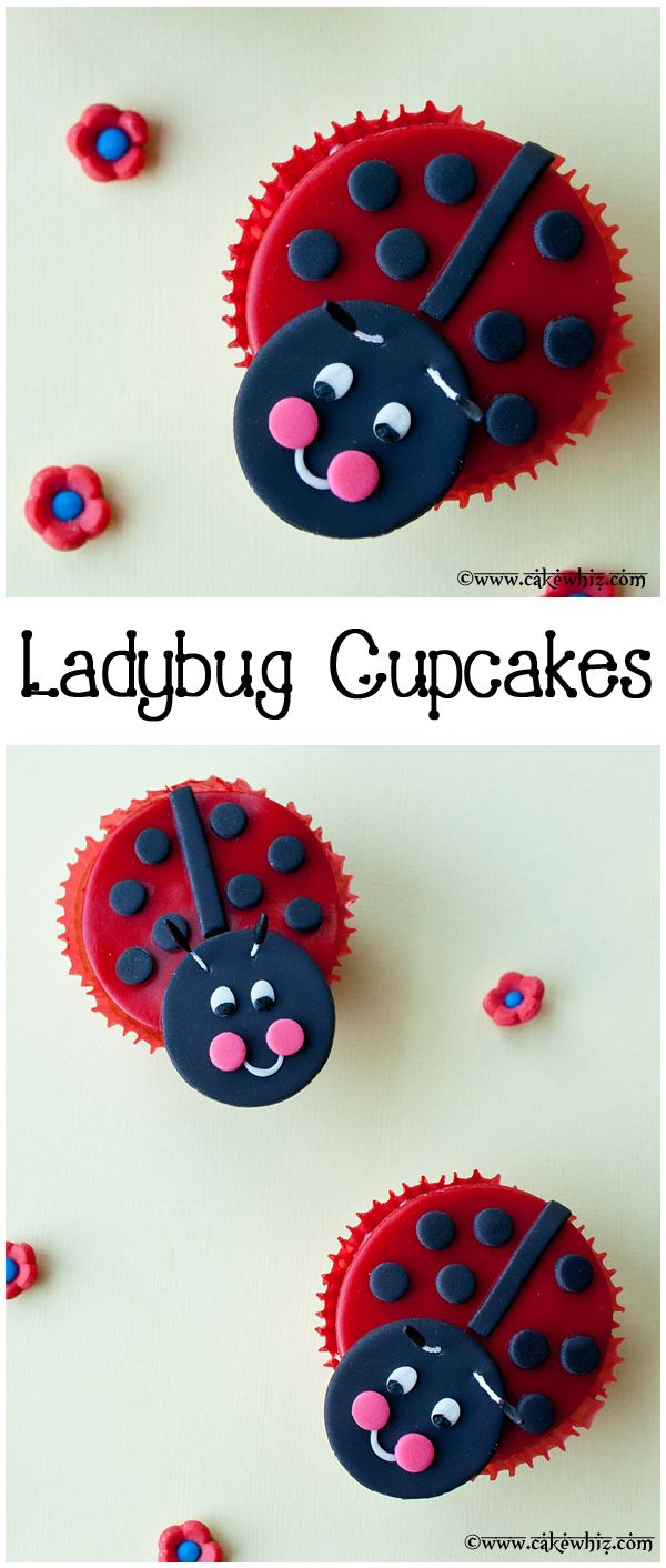 The cutest LADYBUG CUPCAKES ever! And you can make them too by following along my easy video tutorial! From cakewhiz.com
