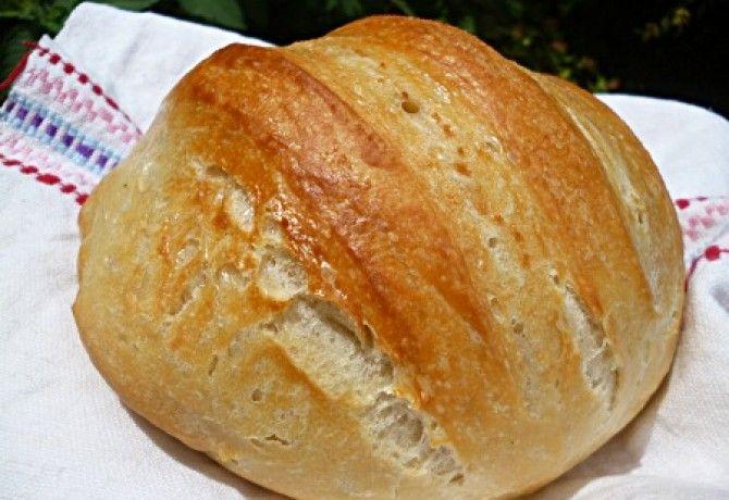Lusta kenyér Torma bevált receptjével recept képpel. Hozzávalók és az elkészítés részletes leírása. A lusta kenyér torma bevált receptjével elkészítési ideje: 65 perc