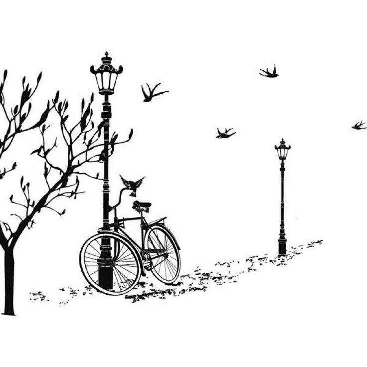bicicleta y golondrinas