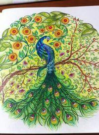 Peacock Secret Garden Pavao Jardim Secreto Johanna Basford Adult ColoringColoring BooksColouringPeacock