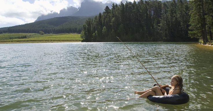 Descripción del ecosistema de un lago. Los lagos son la mayor fuente de agua fresca del mundo. Mientras que la más amplia mayoría -más del 99%- de las fuentes de agua fresca de nuestro planeta están encerradas en los glaciares o enterradas bajo la superficie de la Tierra, los lagos pueden servir de hogar para una variedad de especies, incluyendo peces, crustáceos, anfibios y mamíferos. ...