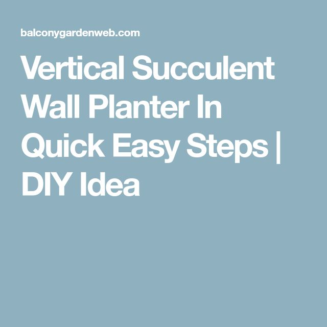 Vertical Succulent Wall Planter In Quick Easy Steps | DIY Idea