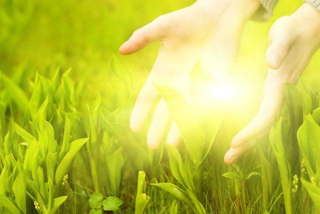 Όταν η αλόη μεγαλώνει, προσελκύει καλή τύχη. Αλλά αν μαραθεί, είναι γιατί έχει απορροφήσει την αρνητική ενέργεια, προστατεύοντάς μας. Advertisements Τα φυτά έχουν συμπεριληφθεί εδώ και πολύ καιρό στη διακόσμηση των χώρων στο σπίτι, στο γραφείο, στις επιχειρήσεις. Εκτός του ότι δίνουν ένα πολύ φρέσκο και φυσικό άγγιγμα σε αυτούς τους χώρους, θεωρείται επίσης ότι …