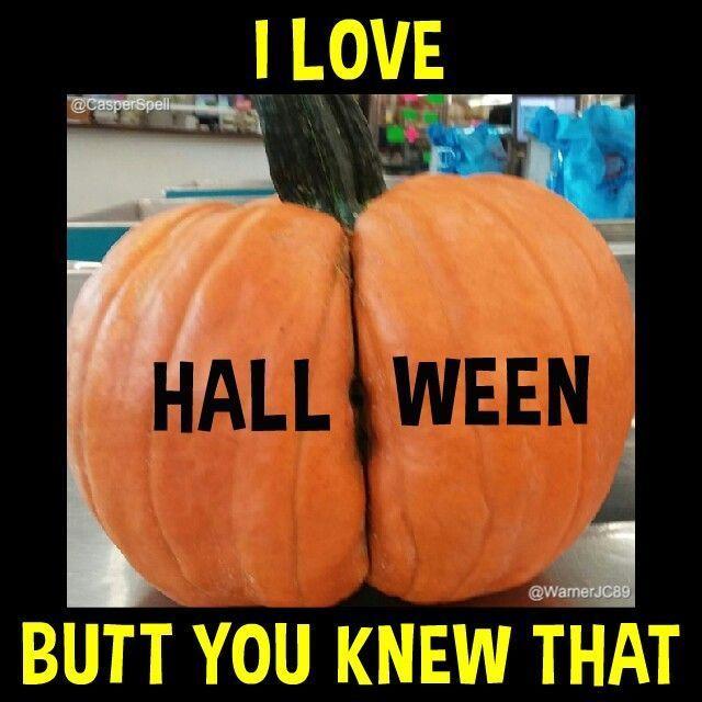 Funny Pumpkin Memes Puns And Fun Pumpkin Jokes