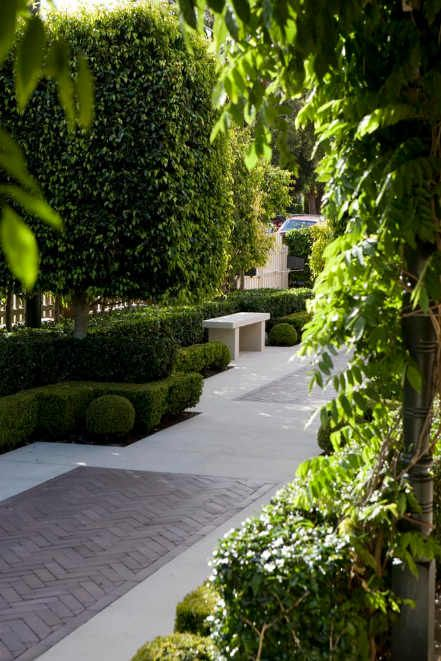 round buxus and hedging