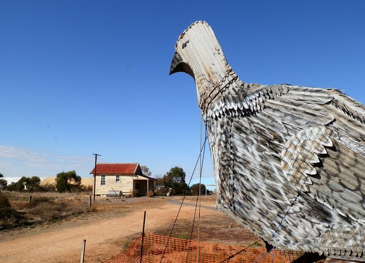 My all-time favourite BIG Aussie thing - the BIG Malleefowl, #Patchewollock, #Victoria