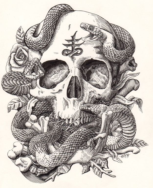 Skull and Snake on Behance