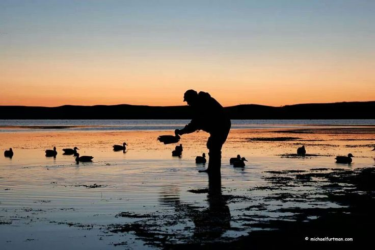 Mornings during duck hunting season are the best!