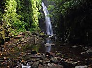 Beaches, Rainforest, Waterfalls- Can I have it all? | Caribbean Islands Forum | Fodor's Travel Talk Forums