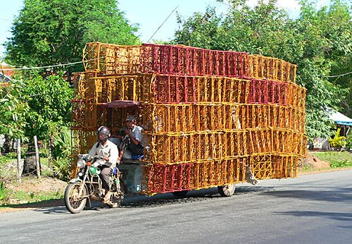 Overloaded 897 by SeekPics, via Flickr