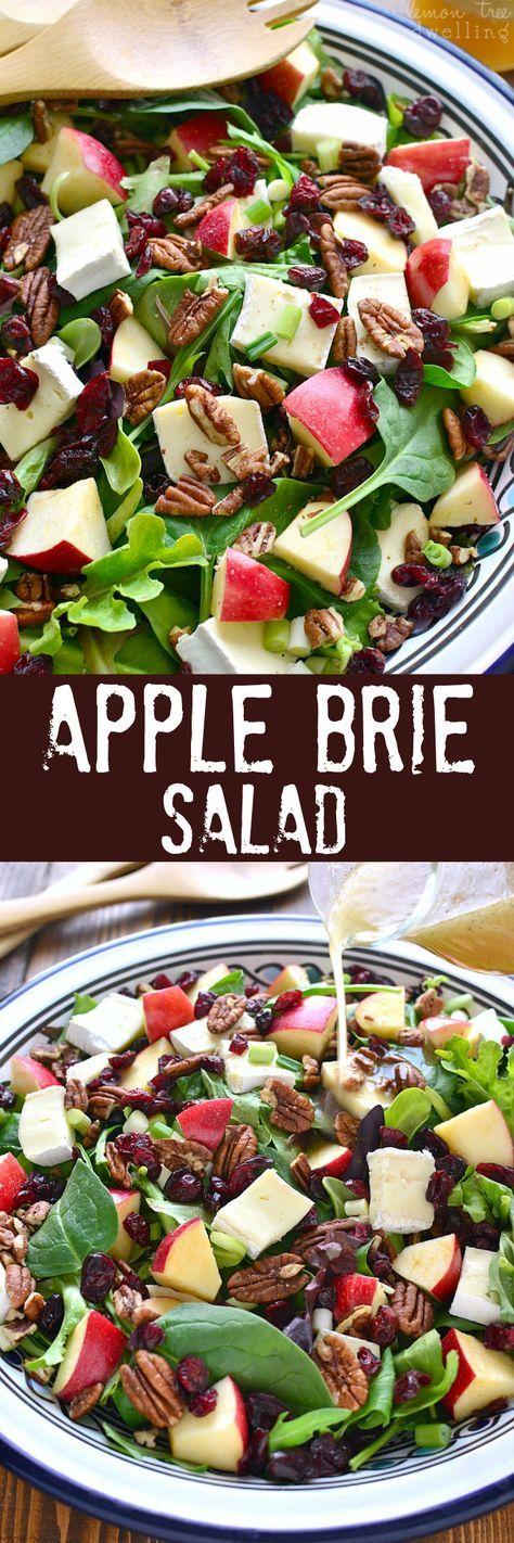 This Apple Brie Salad combines the crispness of apples with the creaminess of Brie cheese in a delicious salad that's perfect for winter!: